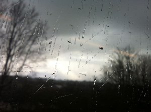Rainy train window