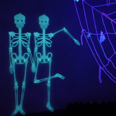 glow in the dark skeletons and web