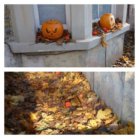 Autumn leaves and pumpkins outside house